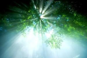 Image credit: 2.bp.blogspot.com