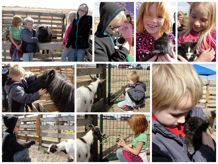 Clockwise from top left: The kids with Rocket, the miniature horse. Durin, Audrey, Lydia, Dain holding kittens. Audrey & Lilo the goat. Durin & Lilo. Dain & Rocket. Center: Dain & Lilo.